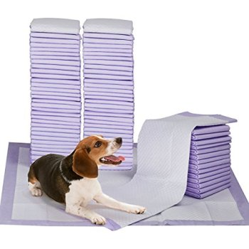 What's The Best Puppy Pee & Potty Training Pad? (+ Floor Trays & Holders!) 2