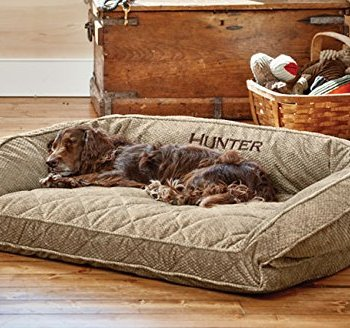 What Are The Best Indestructible, Tough & Chew Resistant Dog Beds? Your Ultimate Guide 18