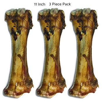 What Are The Best Bones For Dogs? The Ultimate Guide 8
