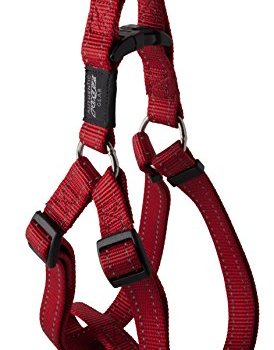 What's The Best Step-In Dog Harness? 9