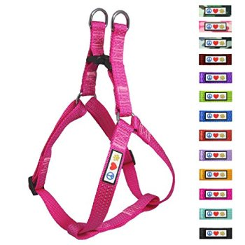 What's The Best Step-In Dog Harness? 6
