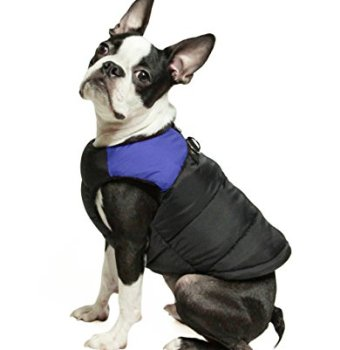 Waterproof Raincoats For Dogs - The Definitive Guide (2020) 26