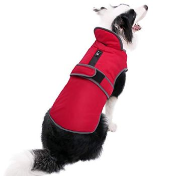 Waterproof Raincoats For Dogs - The Definitive Guide (2020) 21