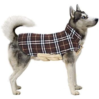 Waterproof Raincoats For Dogs - The Definitive Guide (2020) 15