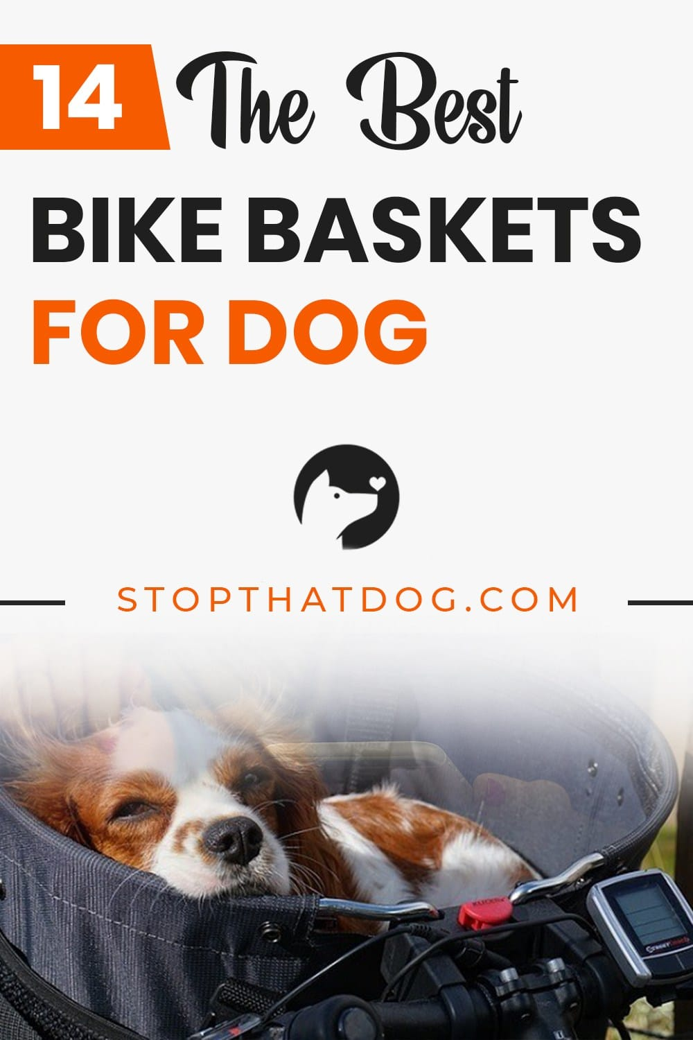 Want to ride a bike with your dog? If so, these bike baskets for dogs are a great buy! This guide highlights the best options on the market right now.