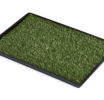 What's The Best Artificial Grass For Dogs? Our Ultimate Guide (2020) 2