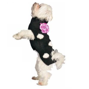 The Best Dog Sweaters For 2020 (Over 70+ Options To Choose From!) 4