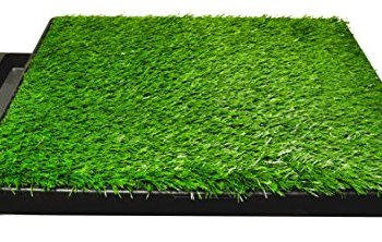 What's The Best Artificial Grass For Dogs? Our Ultimate Guide (2020) 10