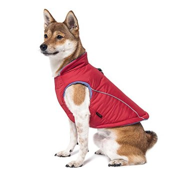 The Best Dog Sweaters For 2020 (Over 70+ Options To Choose From!) 12