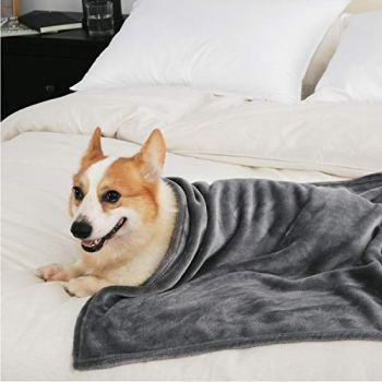What Are The Best Dog Bed Blankets On The Market? Your Ultimate Guide 33