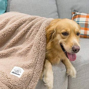 What Are The Best Dog Bed Blankets On The Market? Your Ultimate Guide 29