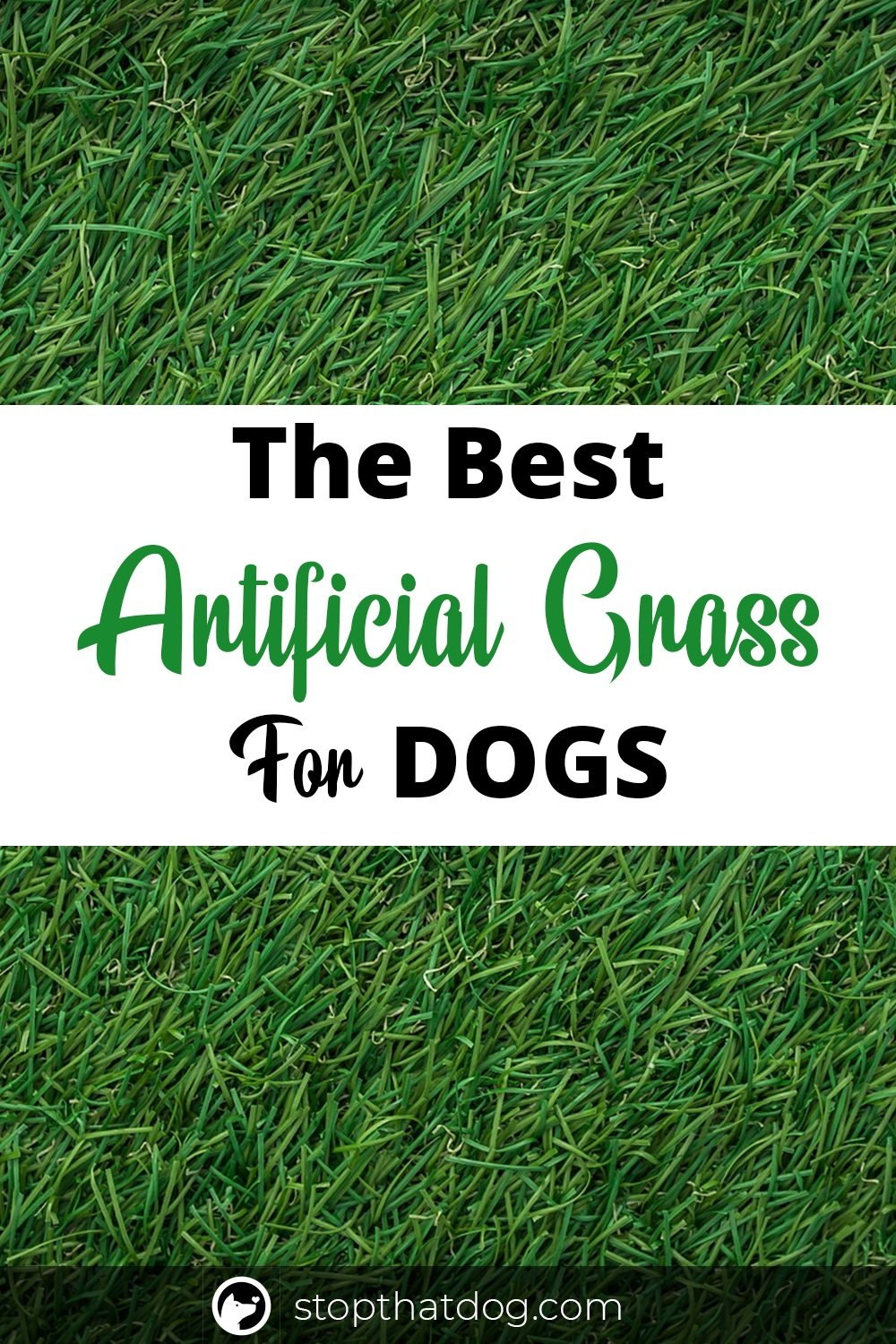 Want some artificial grass for your dog? If so, this guide highlights many of the best options that work great for dogs!