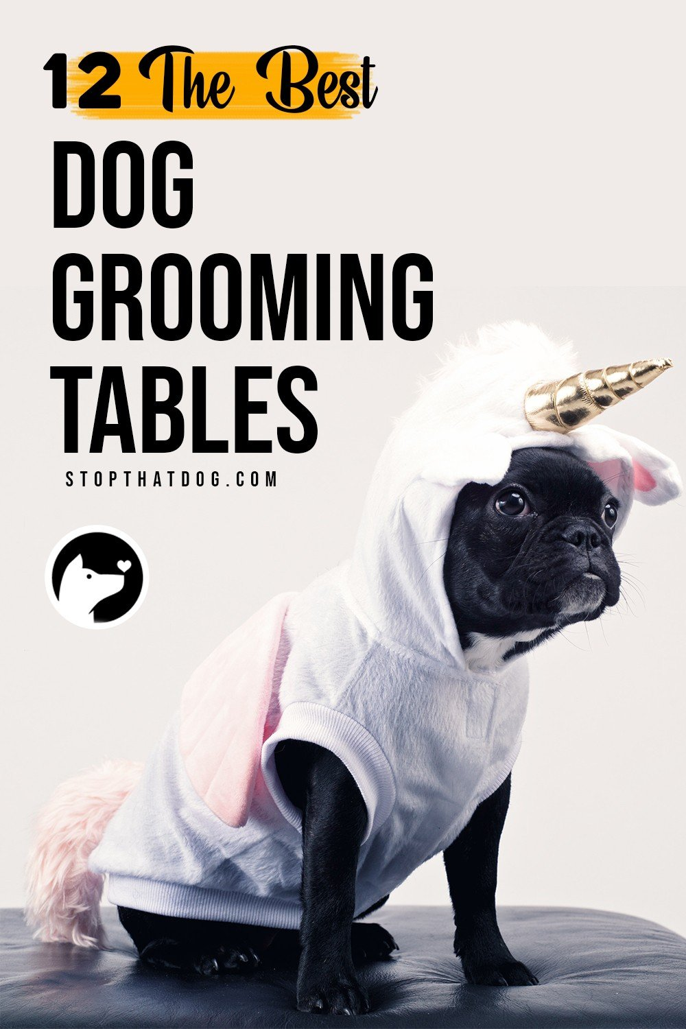 A quality dog grooming table makes grooming way more efficient and convenient. This guide reveals the best dog grooming tables on the market - and there\'s something for any budget!