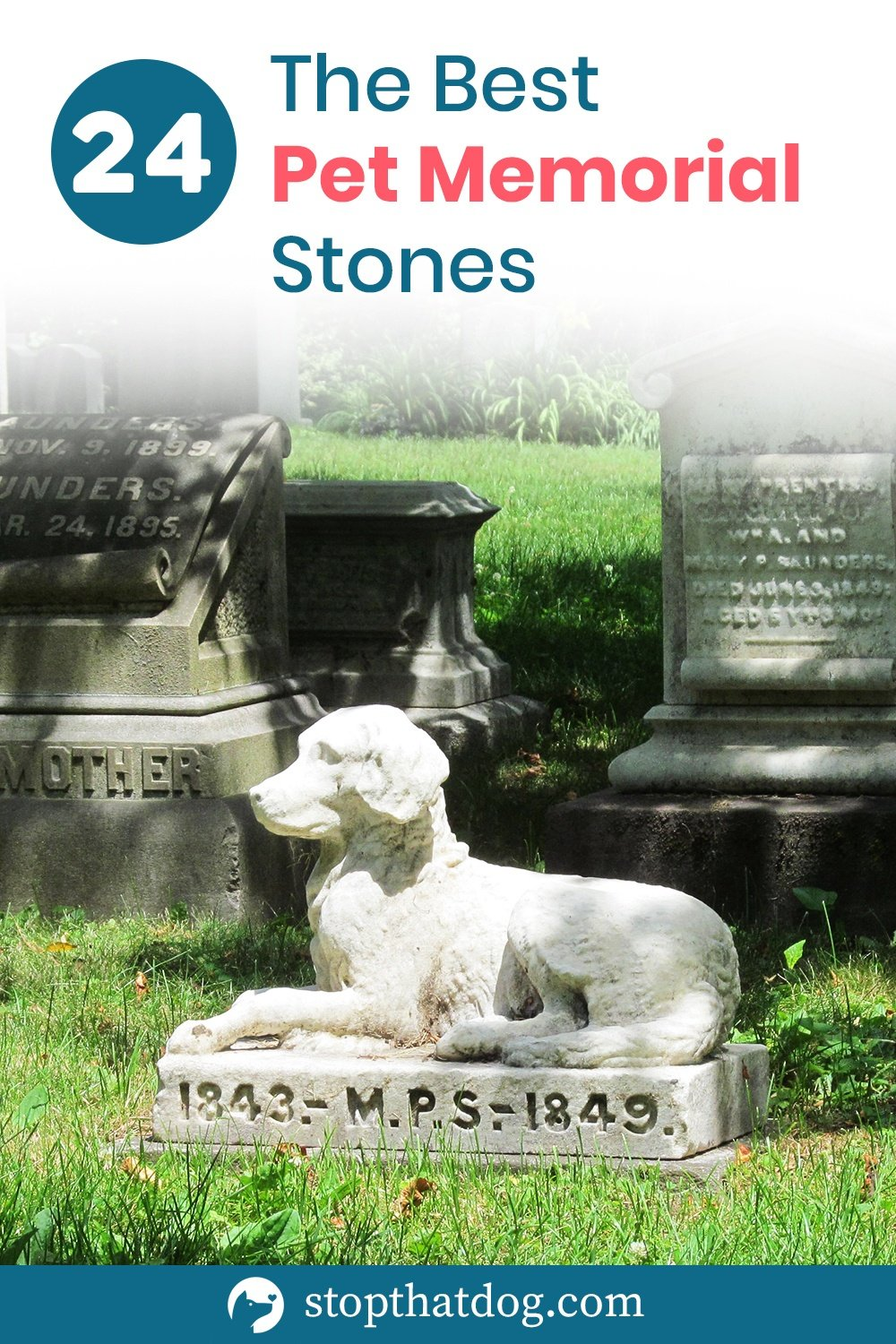 A pet memorial stone is a great way to honor the life of your beloved dog. This guide shows you many of the best pet memorial stones available.
