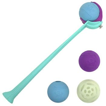 Dog Automatic Ball Launchers - A Fun Way To Keep Your Dog Active 14