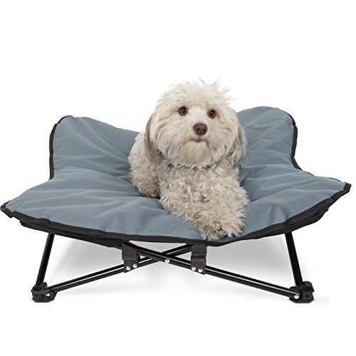 What Are The Best Elevated Dog Beds? (2020) 8