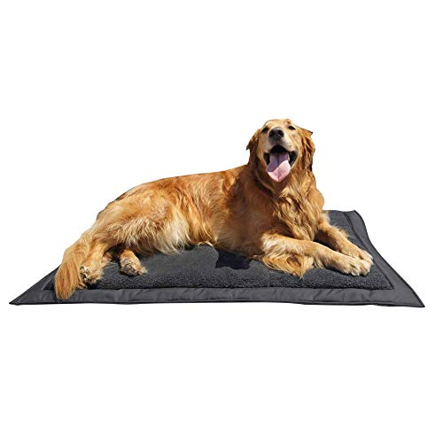 What's The Best Outdoor Dog Bed? Our Top Picks 9