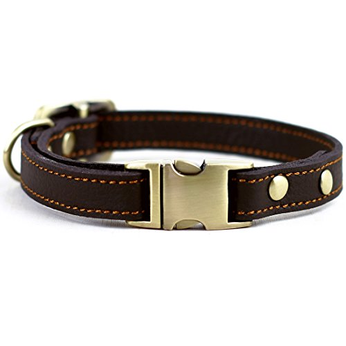What's The Best Leather Dog Collar On The Market? (2020) 18