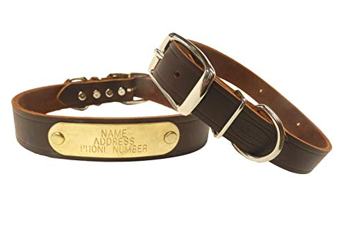 What's The Best Leather Dog Collar On The Market? (2020) 10