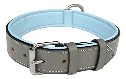 What's The Best Leather Dog Collar On The Market? (2020) 2