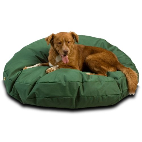 What's The Best Outdoor Dog Bed? Our Top Picks 3