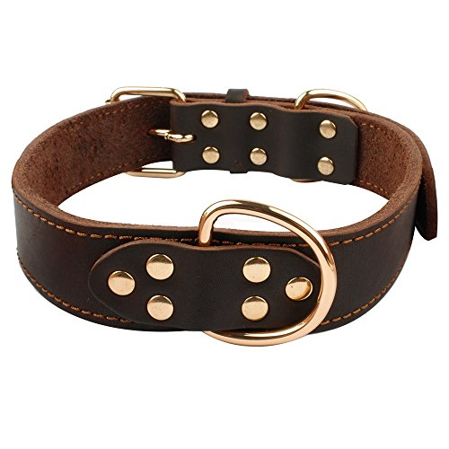 What's The Best Leather Dog Collar On The Market? (2020) 19