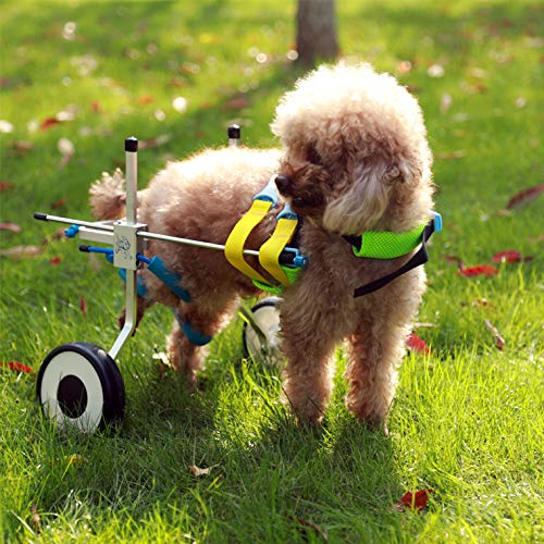 The Best Dog Wheelchairs For Small, Medium, & Large Breeds Reviewed (2020) 11