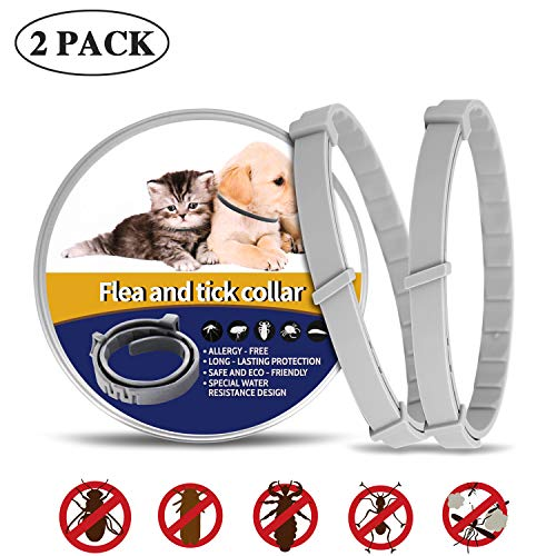What's The Best Flea Collar For Dogs In 2020? Your Ultimate Guide 7