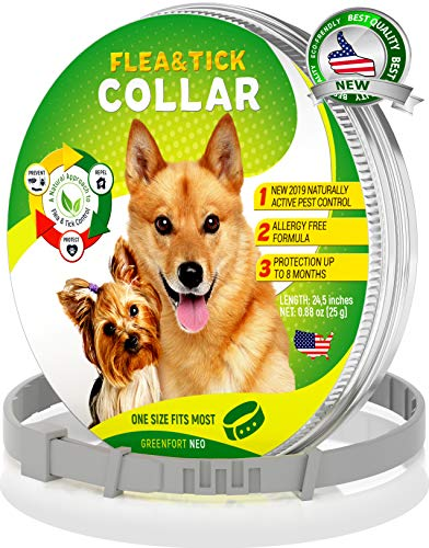 What's The Best Flea Collar For Dogs In 2020? Your Ultimate Guide 11