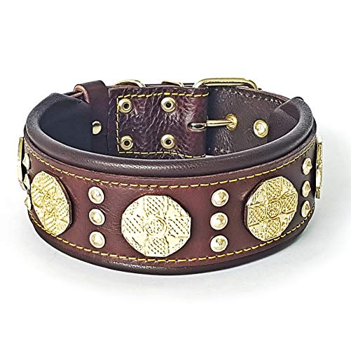 What's The Best Leather Dog Collar On The Market? (2020) 5