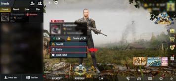 Select Friend - PUBG Mobile