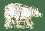 Stora Björnstugan i Laisvallsby