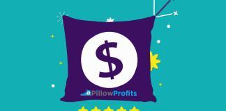 Pillow Profits Review 01