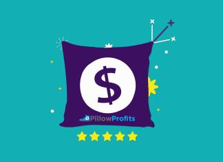 Pillow Profits Review 01