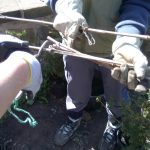 Volunteers helping with the hedge planting: cutting measuring sticks