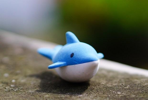 Wal Fisch klein