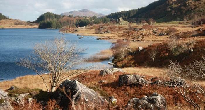 See Irland Ring of Kerry Urlaub Steine