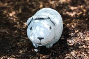 meerschweinchen-mann grab lebe wohl tod haustier