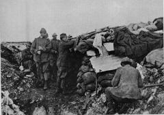 Fanteria - 141° e 142° reggimento, brigata Catanzaro
