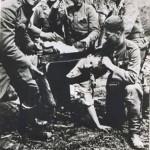 Decapitazione con una sega di un civile serbo da parte Ustascia