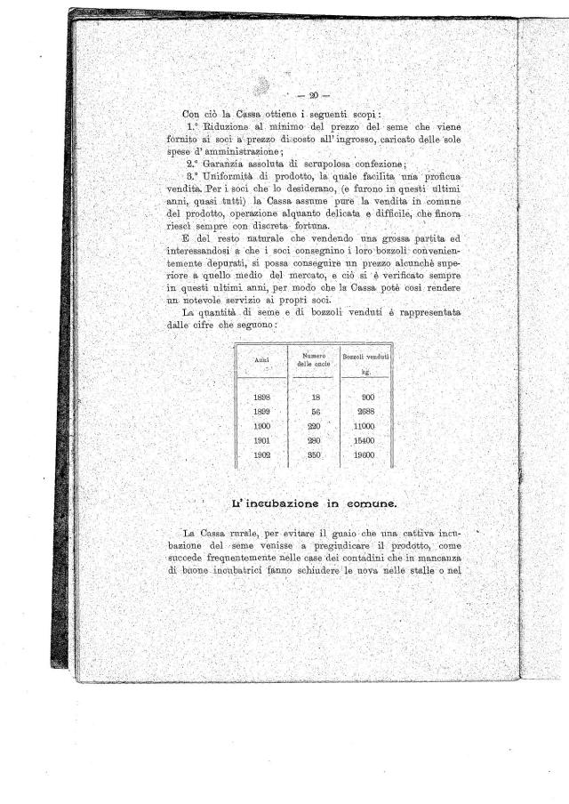 Documento (19)0001