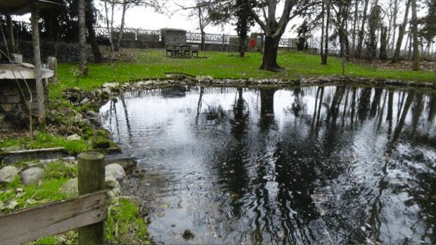 spec prov Verona -6- acqua risorgiva per le risaie 3