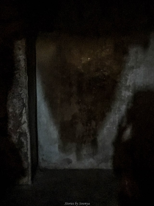The Upside down shadow | Virupaksha Temple of Hampi | Stories by Soumya