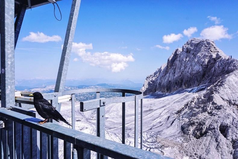 Blick auf Gletscher Hoher Dachstein