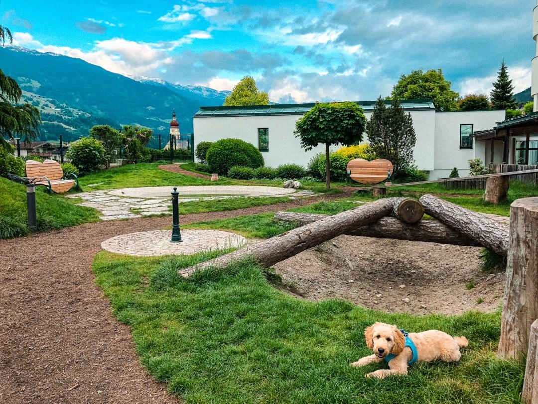 Urlaub mit Hund im Hotel Magdalena
