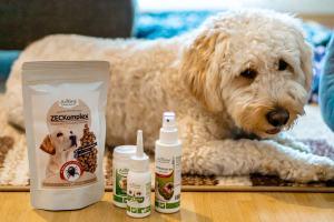 natürliches-zeckenmittel-für-hunde