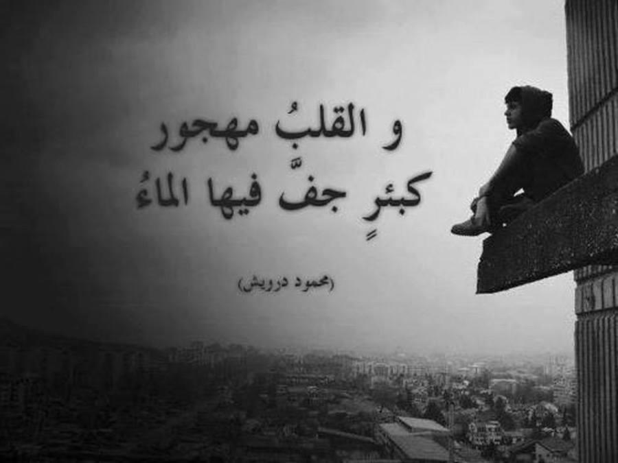قصة حب مؤلمة وحزينة جدا والله تبكي الحجر وتوجع القلب أصعب نهاية