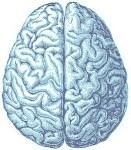 brainsilver