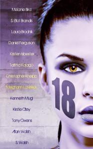 18vision