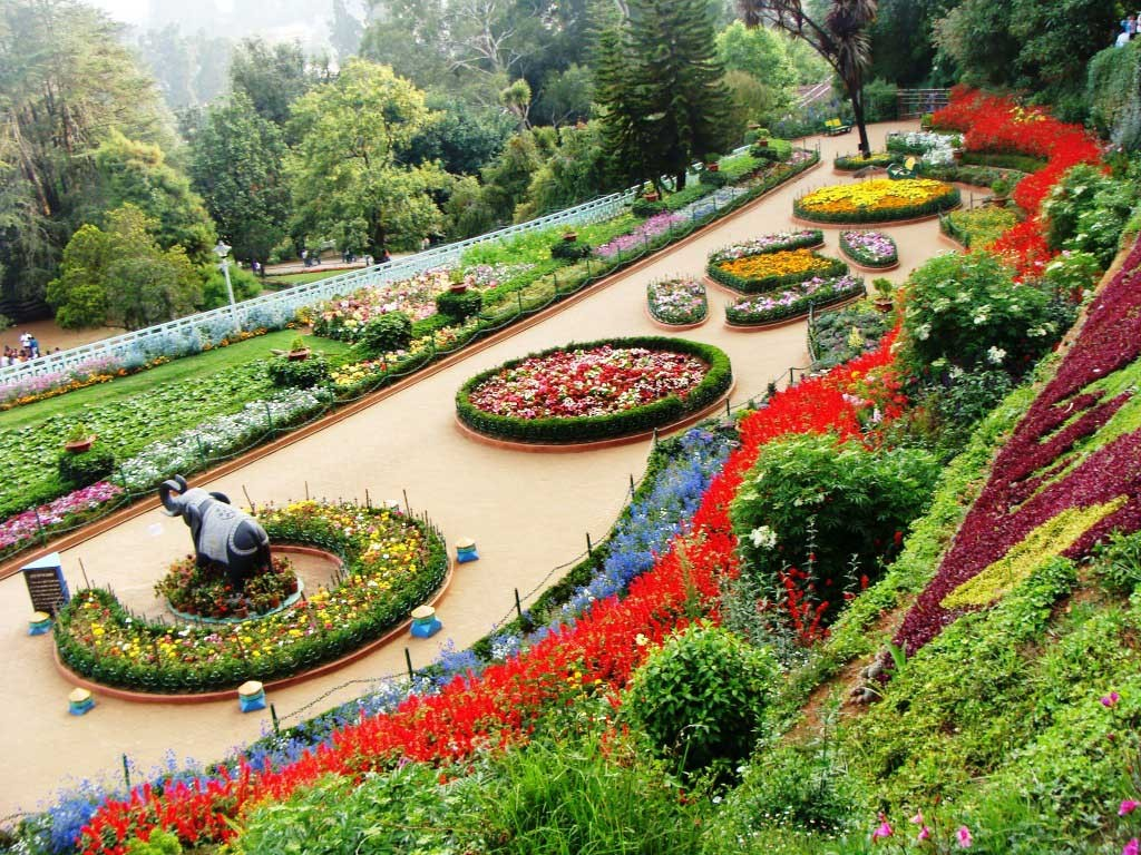 12 Beautiful Places In Punjab That You Must Visit At Least Once 4  The Zakir Hussain Rose Garden  Chandigarh